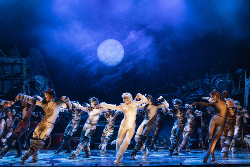 The company of the 2021-2022 national tour of CATS (Photo By Matthew Murphy, Murphymade) v2